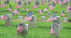 flags-chalmette-natl-cemetery-jela-memorial-day-2008